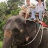 Таиланд. Кочанг. Экскурсия На слонах по джунглям.