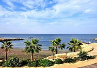 Дешевые туры на Кипр.