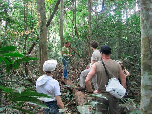 Таиланд. Путеводитель. Национальный парк Кхао Яй. Гид-проводник по джунглям.