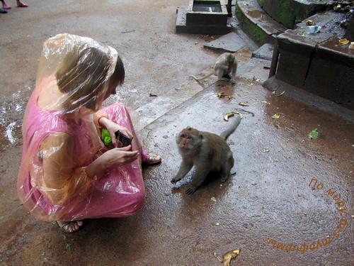 Таиланд. Путеводитель. Пхукет. Ват Суван Куха/Храм обезьян.
