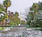 Тур в Сочи дешевле перелета с вылетом 15 января.
