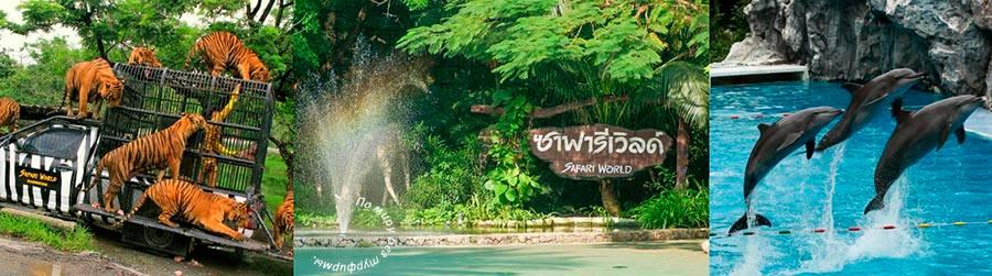 Бангкок для детей. Лучшие развлечения со скидками. Лайфхаки для бюджетных путешествий. Зоопарк Safari World. Билеты дешево.