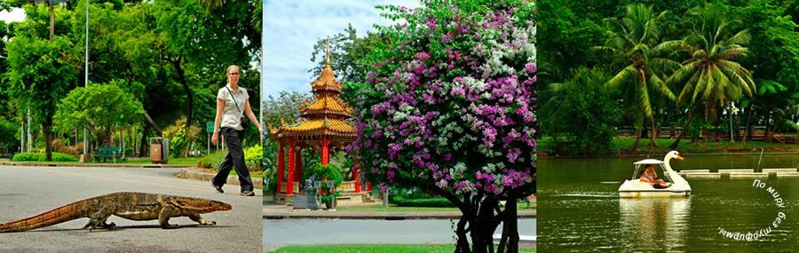 Бангкок для детей. Лучшие развлечения со скидками. Лайфхаки для бюджетных путешествий. Lumpini Park - Парк Люмпини. Билеты дешево.