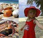 Пляжи провинции Краби. Какой пляж лучше?