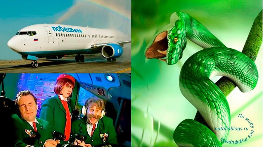 Пьяный рейс. Можно ли спать в самолете. Пьяные пилоты авиакомпании Победа. Скандал