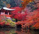 Стоит ли ехать в Японию? Дорого ли в Японии? Считаем сколько стоит самостоятельное путешествие в Страну восходящего солнца