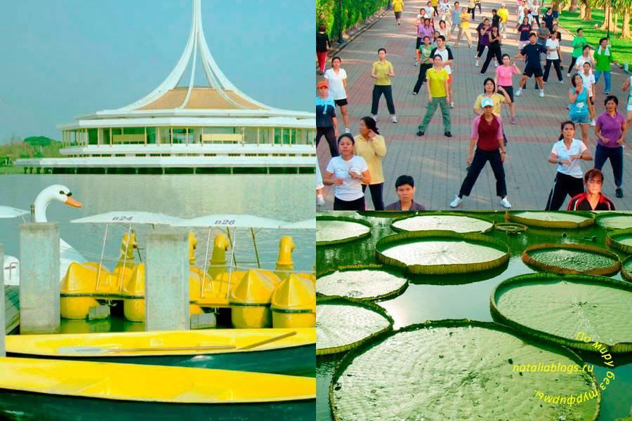 Лучшие парки Бангкока. King Rama IX Park. Как добраться. Время работы. Отзывы. Что посмотреть в Бангкоке с детьми