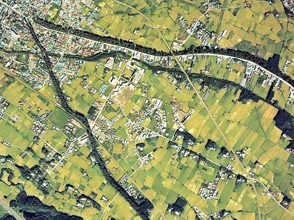 Аэросъемка кедровой аллеи Никко