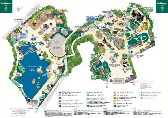 Зоопарк Уэно в Токио. Цена, как добраться, карта ... на официальном сайте
